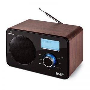 Auna Worldwide • Radio internet • Radio numérique • Radio Wifi • WLAN/LAN • Tuner DAB/DAB+ RDS • FM/AM • AUX USB MP3 • Réveil, snooze et sleep-timer • Ecran LCD • Télécommande • Bois • marron de la marque Auna image 0 produit