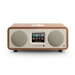 NUMAN One 2.1 • radio Internet design • tuner DAB/DAB+/FM • Spotify Connect • écran TFT• RDS • Wi-Fi/LAN • Bluetooth • AUX • 2 enceintes • subwoofer • 2 égaliseurs • RMS 20 W • réveil • marron de la marque Numan image 0 produit