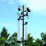 station météo pluviomètre anémomètre TOP 10 image 1 produit