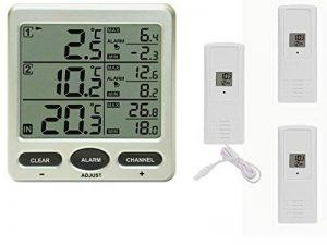 Thermomètre radio Froggit FT0075 avec3capteurs sans fil (dont un avec sonde de câble) - Écran LCD de la marque Froggit image 0 produit